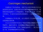 carcinogen mechanism