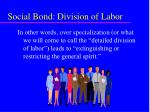 social bond division of labor53
