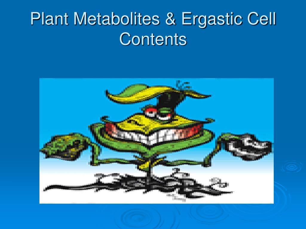 plant metabolites ergastic cell contents l.