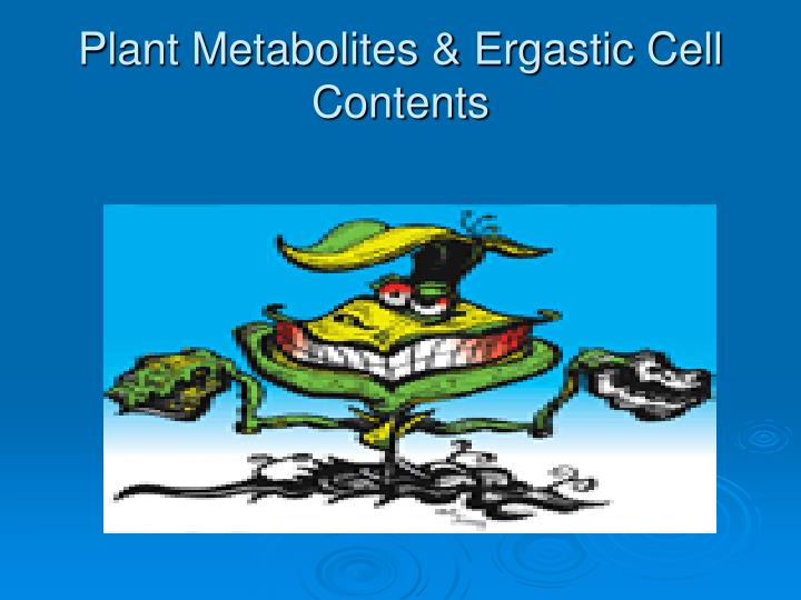 plant metabolites ergastic cell contents n.
