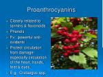 proanthrocyanins