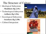 the structure of culture
