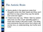 the autistic brain