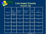 live insect counts insects kg