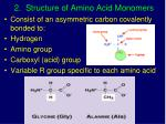 2 structure of amino acid monomers