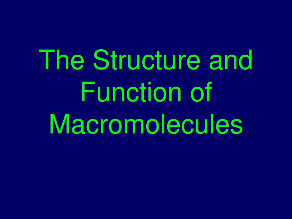the structure and function of macromolecules l.