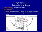 amphotericin b tolerability and safety16