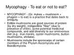 mycophagy to eat or not to eat