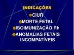 indica es1