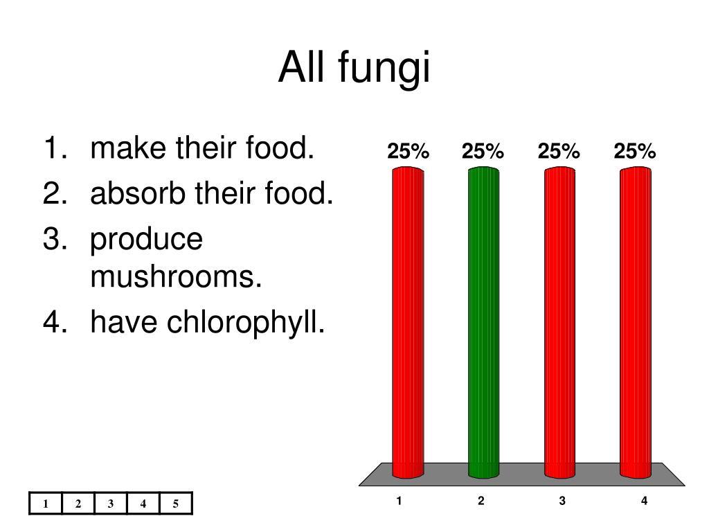 all fungi l.
