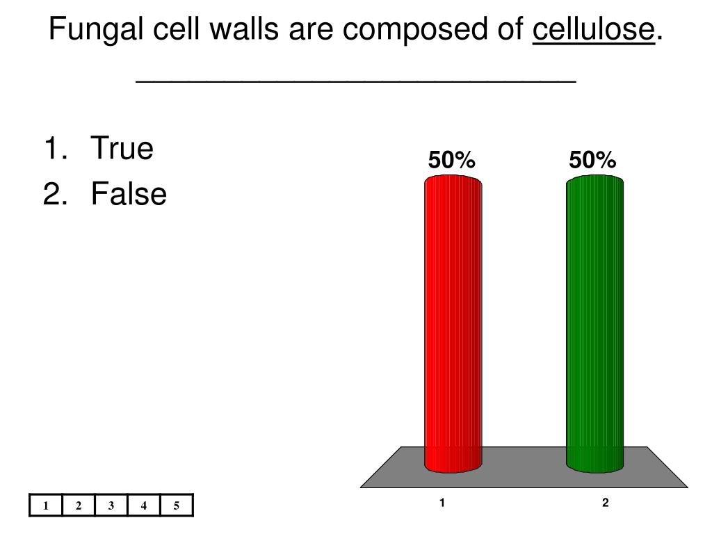 Fungal cell walls are composed of