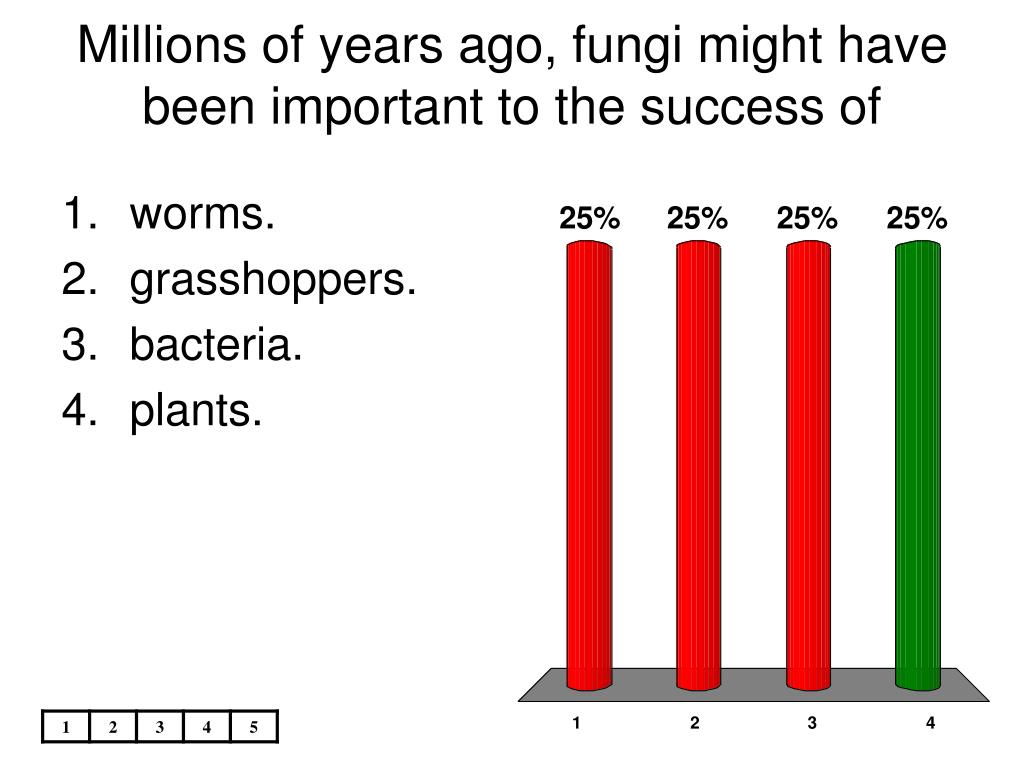 Millions of years ago, fungi might have been important to the success of