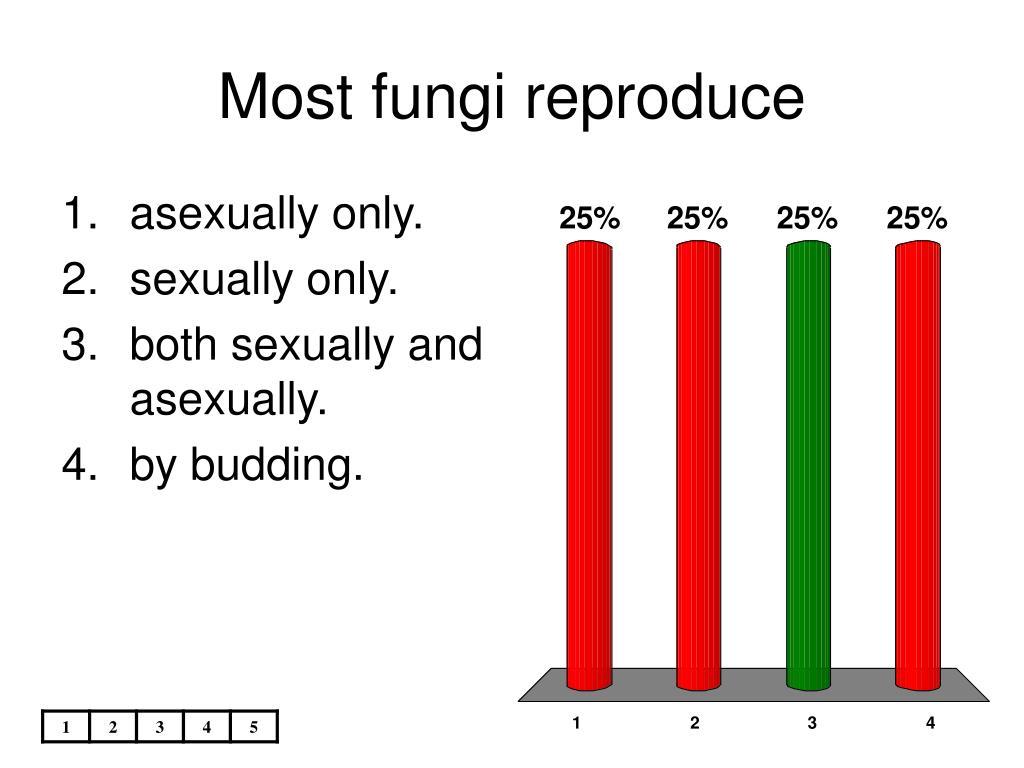 Most fungi reproduce