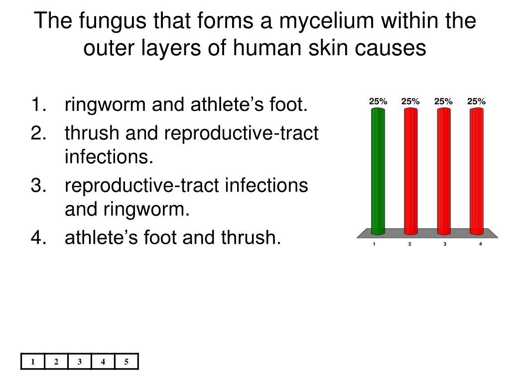 The fungus that forms a mycelium within the outer layers of human skin causes