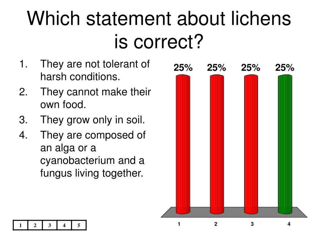 Which statement about lichens is correct?