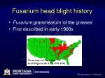 fusarium head blight history
