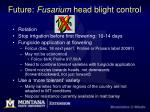 future fusarium head blight control8