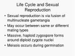 life cycle and sexual reproduction