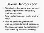 sexual reproduction54