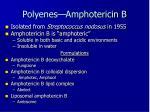 polyenes amphotericin b5