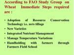 according to fao study group on wheat immediate steps required are