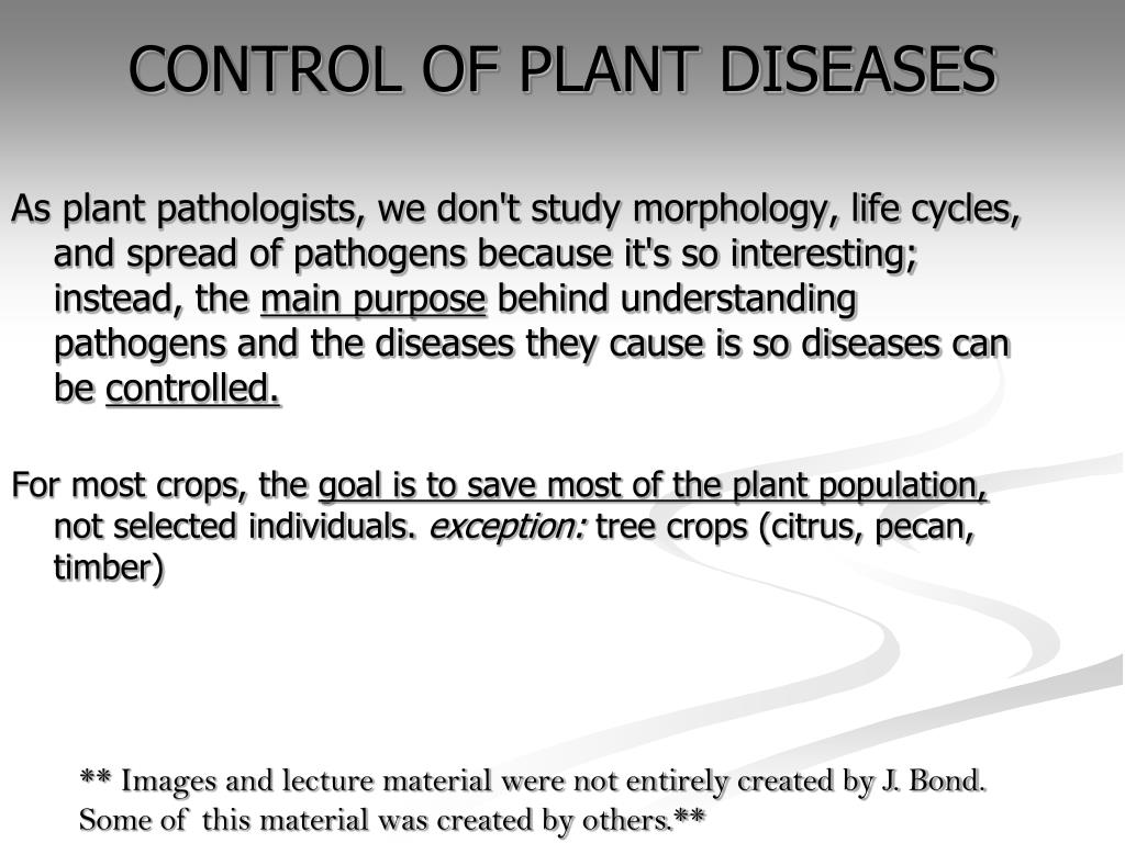 control of plant diseases l.