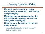 sensory systems vision