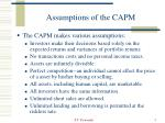 assumptions of the capm