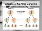 causes of genetic variation39