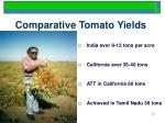 comparative tomato yields