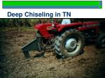 deep chiseling in tn