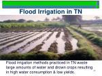 flood irrigation in tn