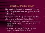 brachial plexus injury