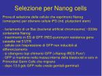 selezione per nanog cells
