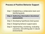 process of positive behavior support42