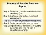 process of positive behavior support73