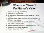what is a team facilitator s vision