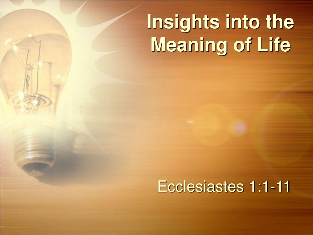insights into the meaning of life l.