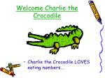welcome charlie the crocodile
