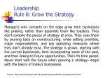leadership rule 8 grow the strategy