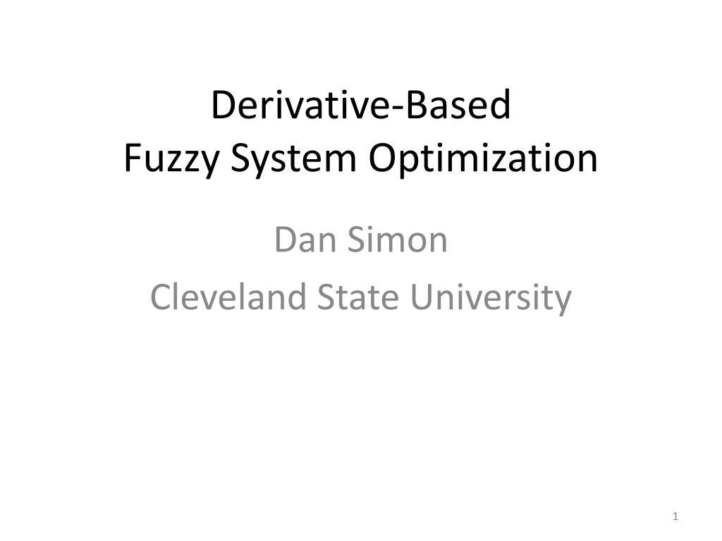 derivative based fuzzy system optimization l.
