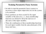 training parametric fuzzy systems