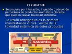 cloracne