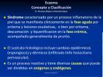 eczema concepto y clasificaci n a ancona alayon y arevalo l pez