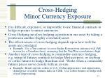 cross hedging minor currency exposure