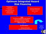 optimum integrated hazard risk financing