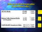 what are the birth demographics for the hudson valley