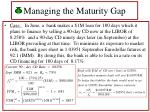 managing the maturity gap