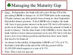 managing the maturity gap41