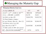 managing the maturity gap42